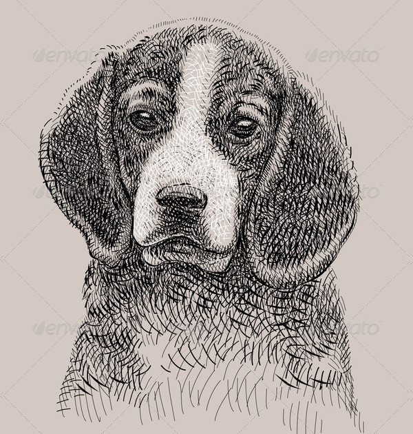 Dog Artistic Drawing
