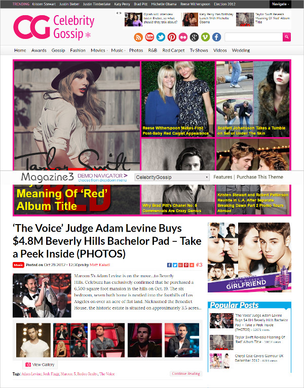 Celebrity Gossip News Entertainment Theme $59