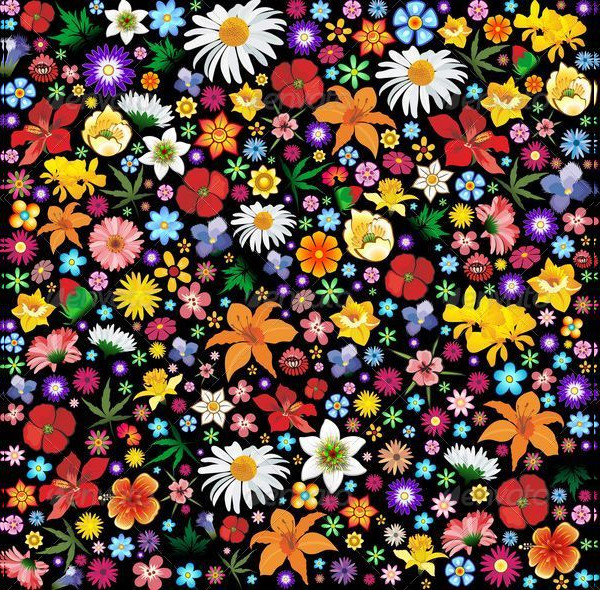 Colorful Spring Summer Flowers Patterns