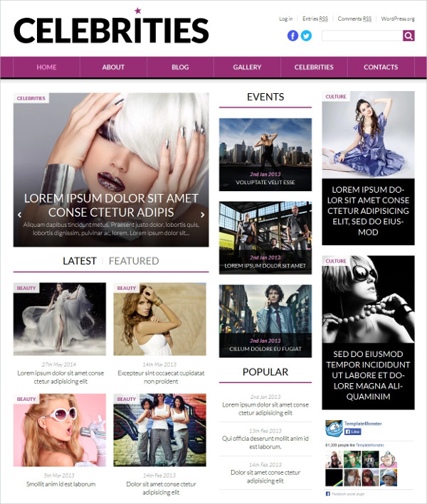 Fashion & News Portal Celebrity WordPress Theme $75