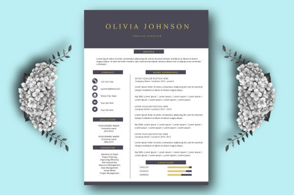 fully editable sample one page resume template - One Page Resume Template