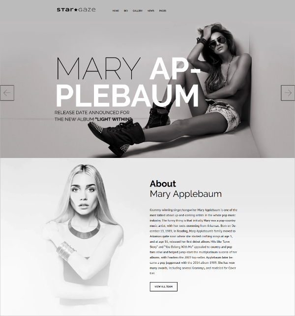 Premium Celebrity Responsive WordPress Theme $75