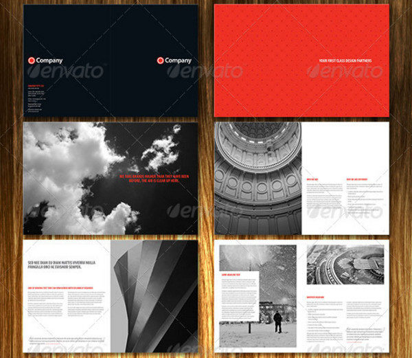 Professional Agency Brochure Template