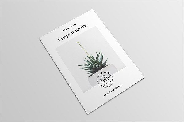 Agency Profile Brochure Template