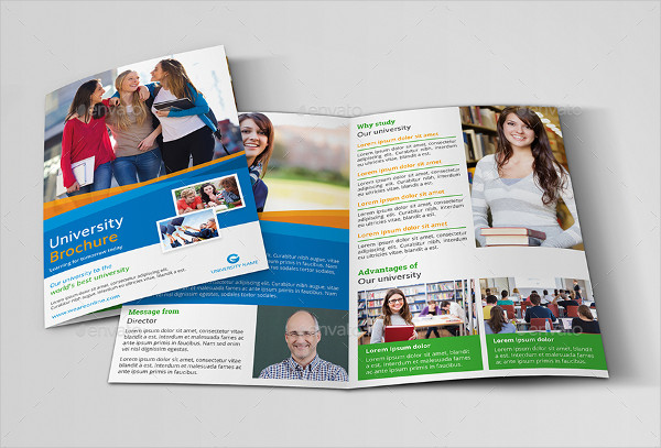 Professional Education Brochure Template
