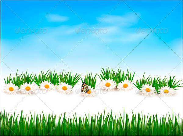 Collection Of Green Grass Background