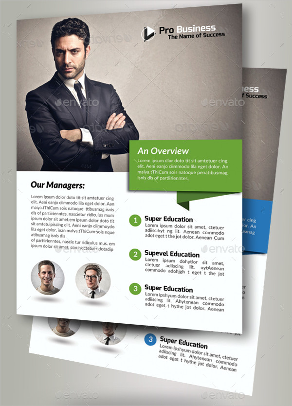 Awesome Business Solutions Consultant Flyer
