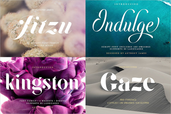 Big Professional Fonts Bundle