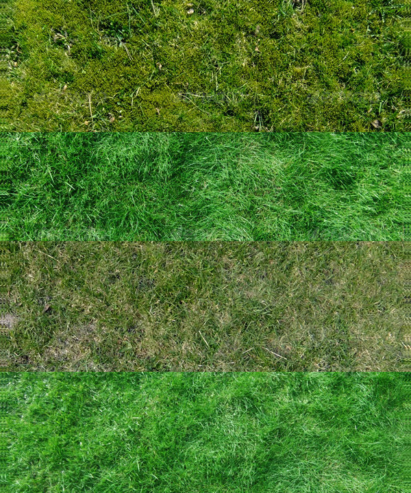 Set of 9 High Resolution Grass Texture