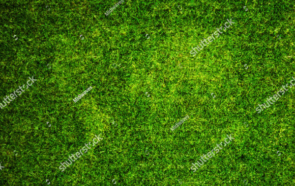 World Map Grass Texture Background