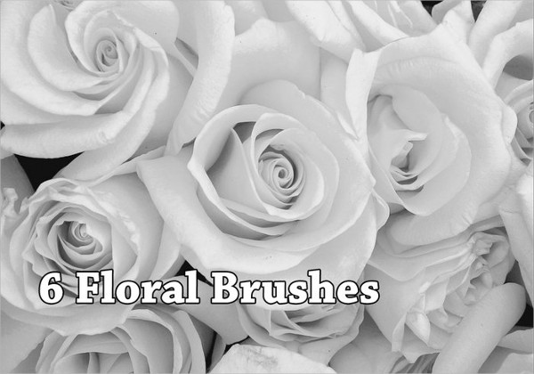 Free Floral Brush Set for Photoshop