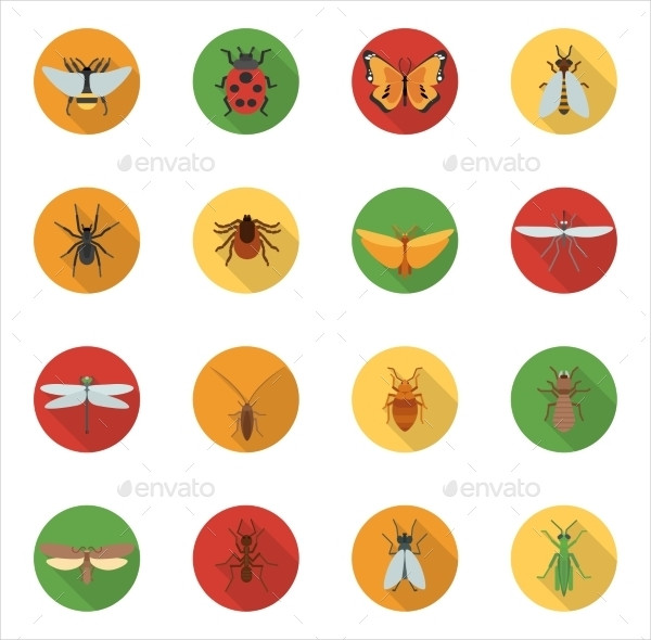 Best Insects Icons