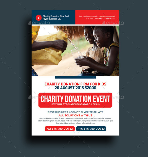 Professional Donation Flyer Template