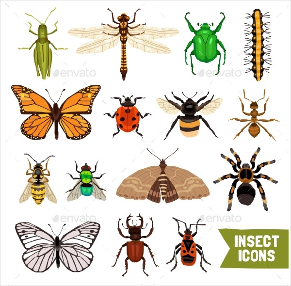 Editable Insects Icons Set