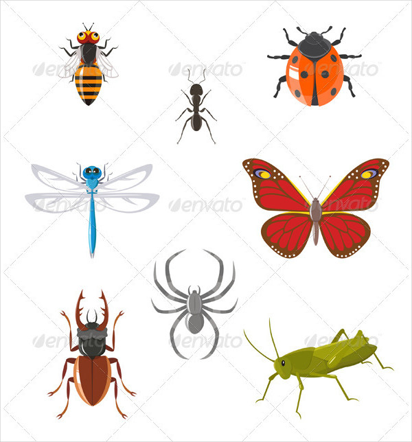 Custom Insect Icons Set