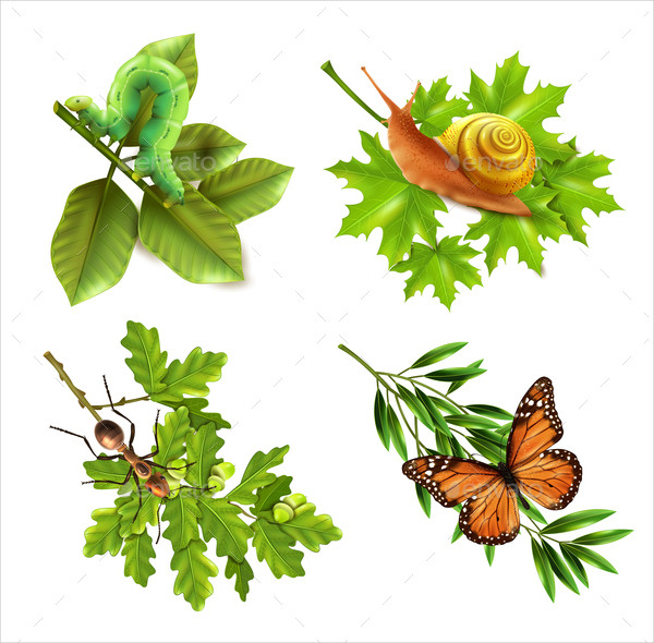 Insects Realistic Icons