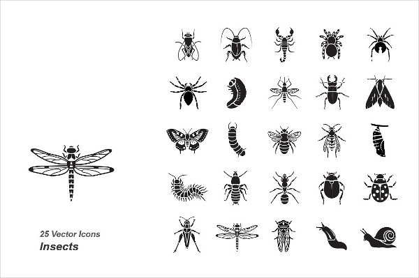 Unique Insects Vector Icons