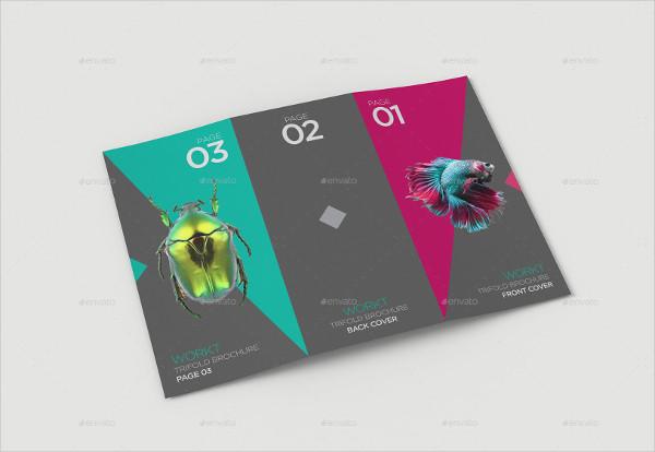 Clean & Editable Brochure Mock-Up