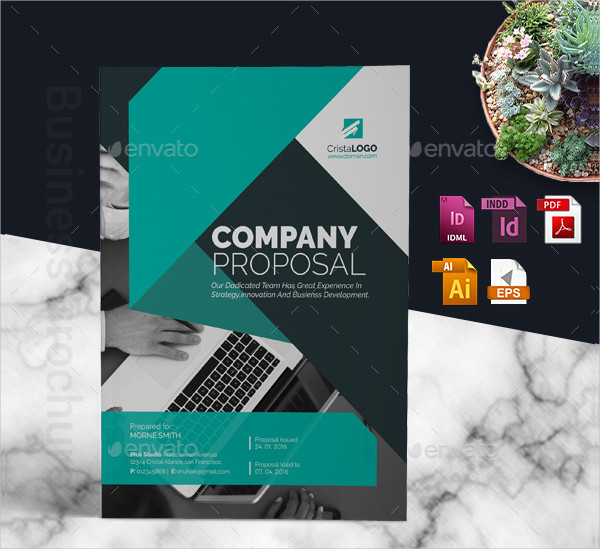 Company Indesign Proposal Template