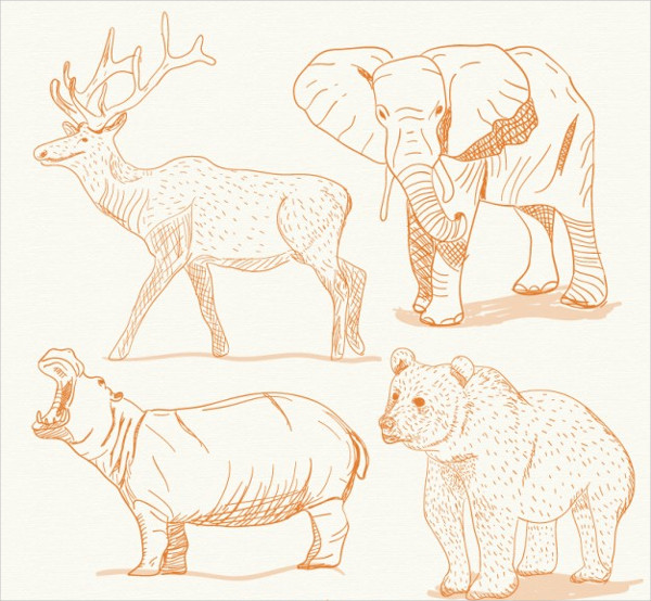 Free Download Elephant Drawings