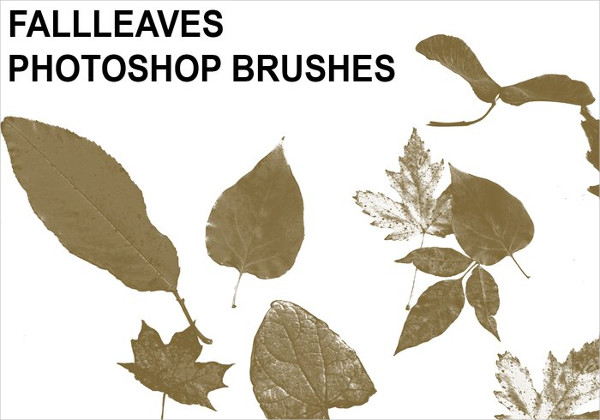 Free Download Fall Leaves Brushes