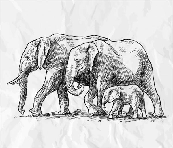 Free Drawings of Elephants