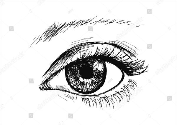 Hand Drawing the Eye