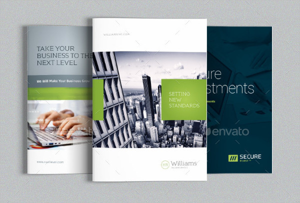 Professional Business Brochures Bundle