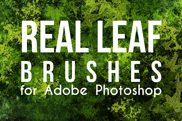 Real Leaves Photoshop Brushes