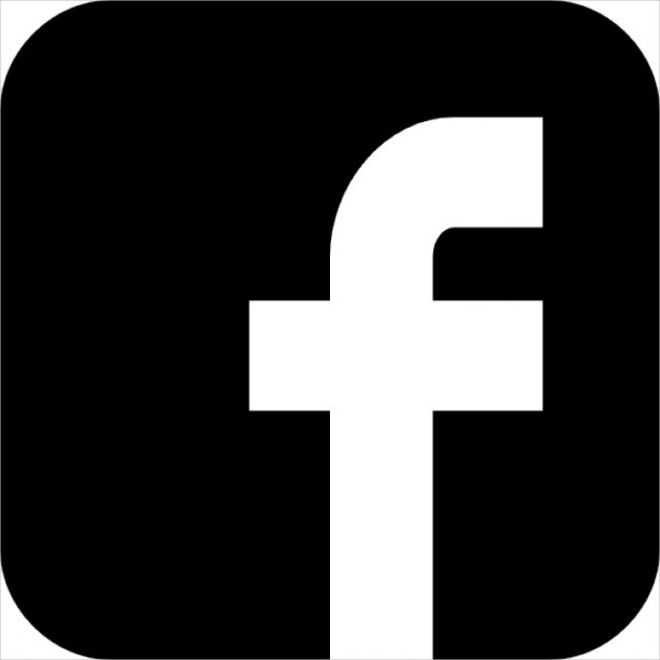 Facebook Logo Free Icon