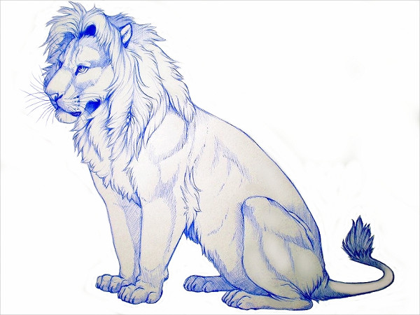 Lion Pen Drawing