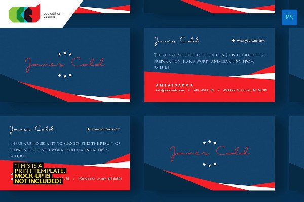 Print Ready Political Business Card Template