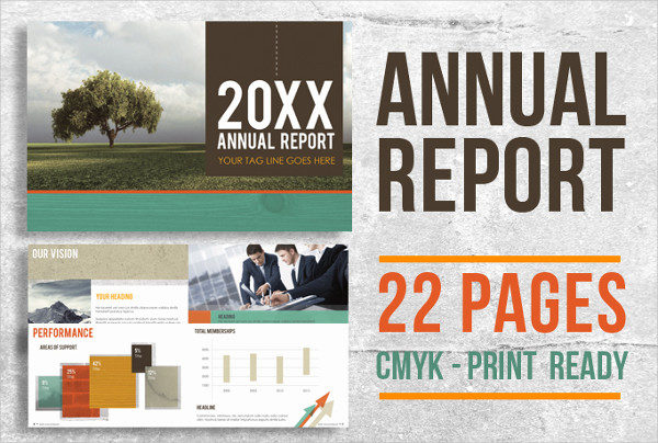 22 Page Corporate Annual Report Brochure Booklet