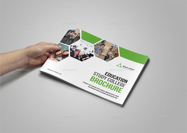 Education Unique Design Brochure Template
