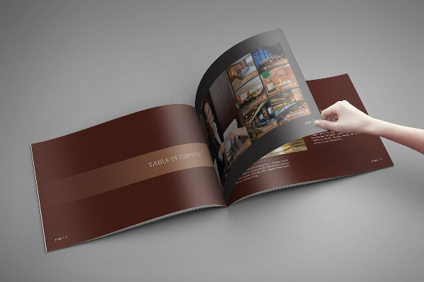 Colorful Brochure for Hotel