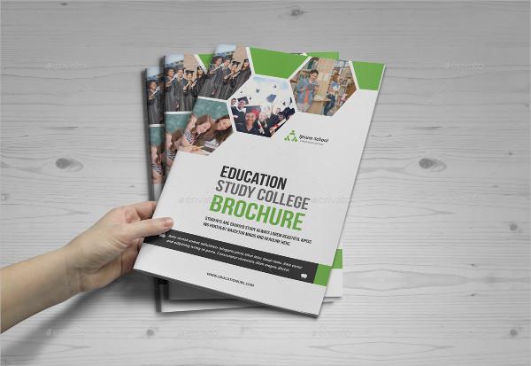 Attractive Educational Institute Brochure Design