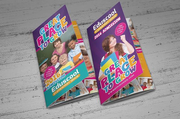 Elementary School Education Trifold Brochure