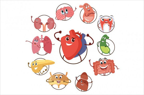 Funny Medical Icons of Organs
