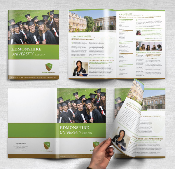Perfect Educational Brochure Template