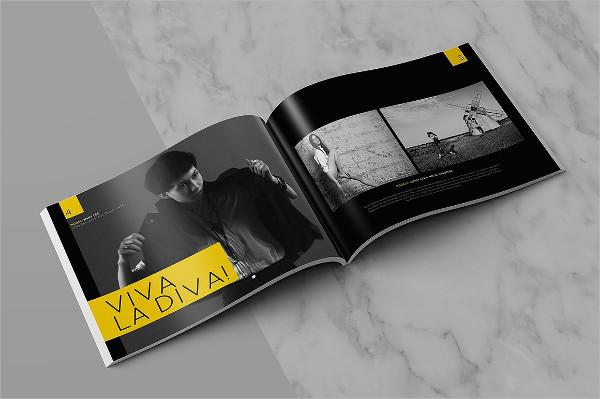 Cool InDesign Brochure Template for Portfolio