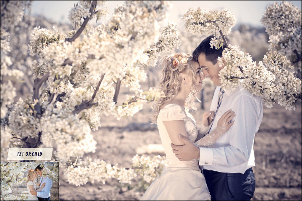 15 Fully Editable Wedding Photoshop Action Collection
