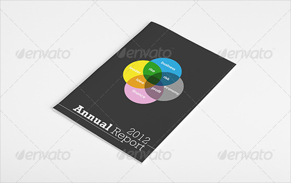 Custom Project Annual Report Brochure