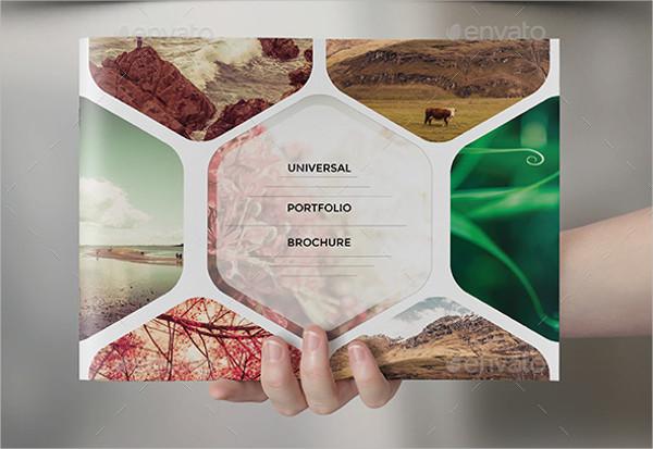 Universal Portfolio Catalog or Brochure Template