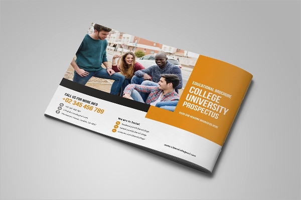 College University Prospectus Bundle Brochure