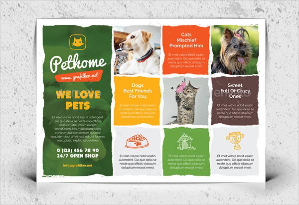 Pet Shop Professional Flyer Templates