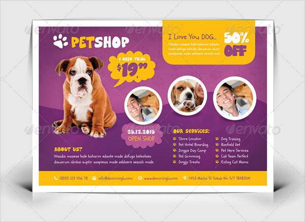 Pet Vaccination Shop Flyer Templates