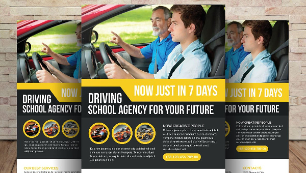 21+ Driving School Flyers