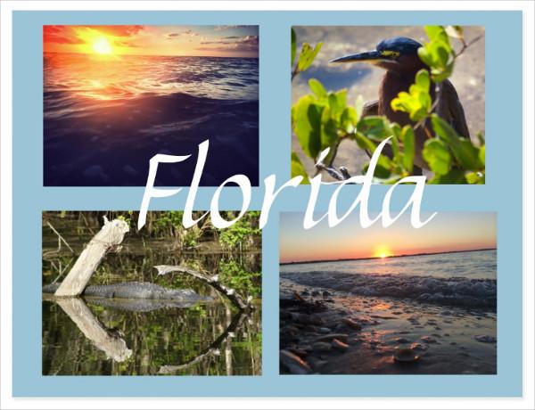 Florida Photography Postcard Template