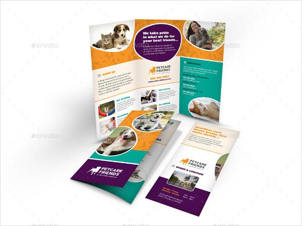 Popular Pet Care Business Brochure Template