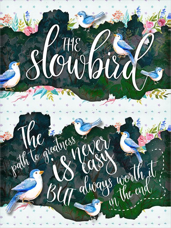 Slow Bird Summer Script Font